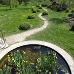 Arboretum de la Vallée-aux-Loups : bassin et sentier