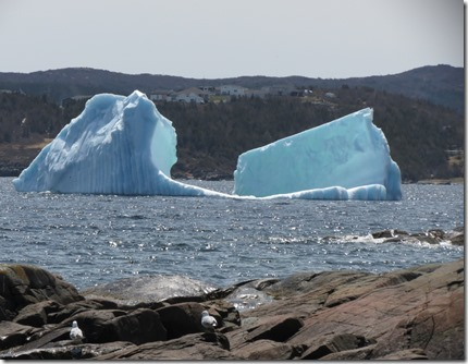 nl_sa_saint_anthony_bight_my_glacier
