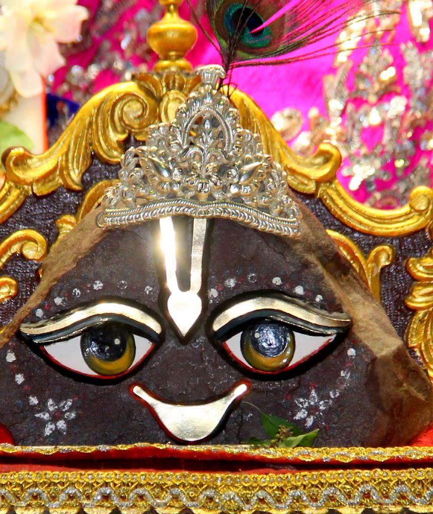 ISKCON Juhu Mangal Deity Darshan 14 Jan 2016 (8)