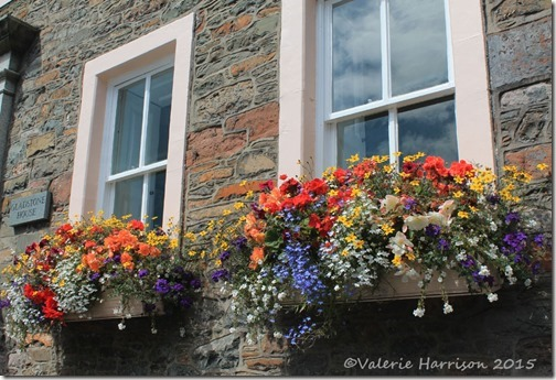 2-window-boxes