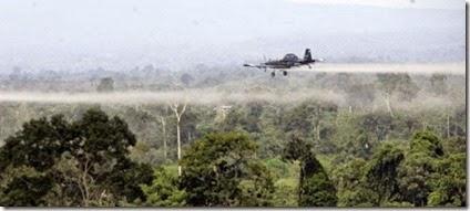 Fumigaciones Colombia 2