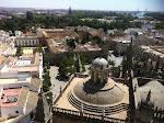widok z Giraldy, słynnej wieży katedry w Sevilli
