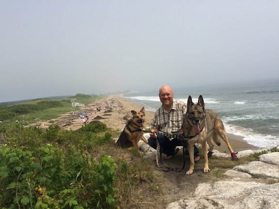 The pack on the overlook at Reid State Park
