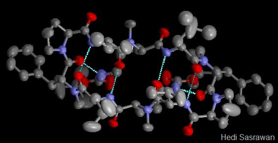 5 Fungsi Protein