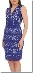 Badgley Mischka stretch lace dress