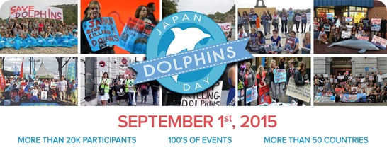 japan dolphins day