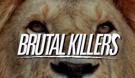 Lwy kanibale / Brutal Killers (2011) PL.DVBRip.XviD / Lektor PL