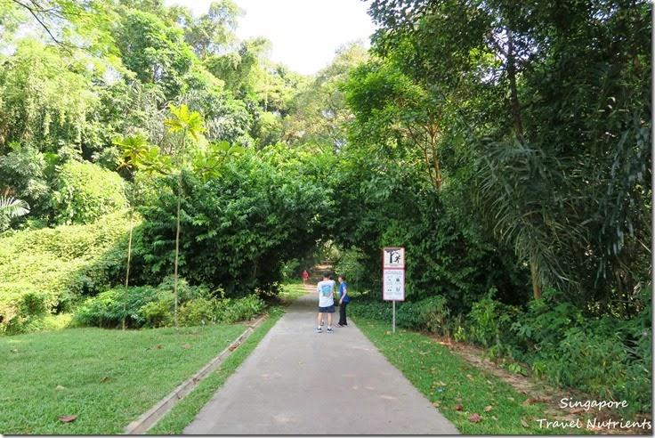 新加坡花柏山 (5)
