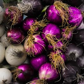 Purple onions by Jocelyne Maucotel - Food & Drink Fruits & Vegetables ( onions, still life, vegetables )