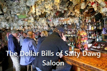 salty-dawg-saloon