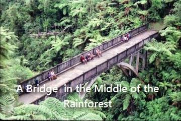 whanganui-bridge