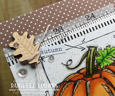AutumnPumpkin_C_DanielleLounds