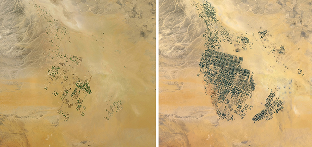 Growth of groundwater-based centre pivot irrigation in Saudi Arabia between 2000-2010 before being scaled back. Photo: Google