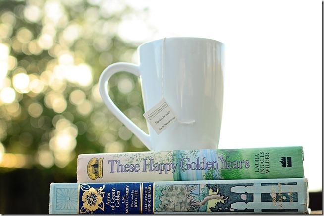 Comfort booksjpg