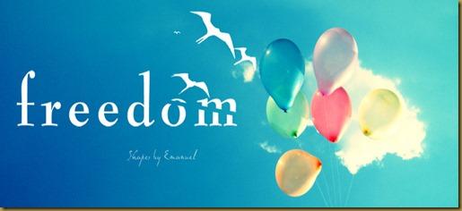 20100815191521_freedom
