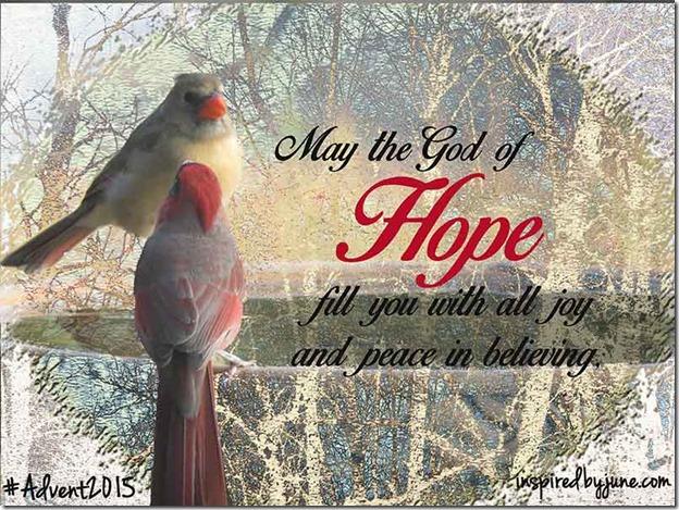 Cardinals_Hope