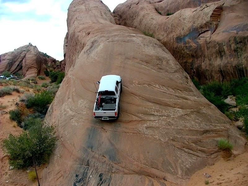 lions-back-moab-4