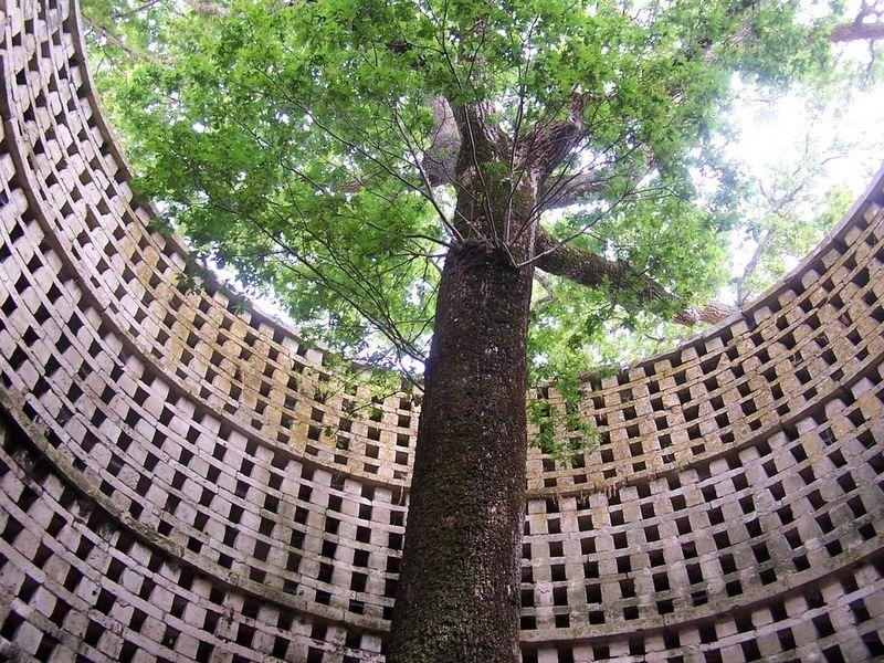oak-dovecote-pouzay-1