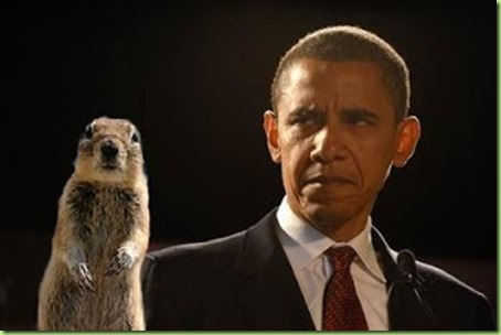 squirrel-obama
