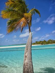 One Foot Island, Aitutaki. I made this photo the screen saver on my phone.