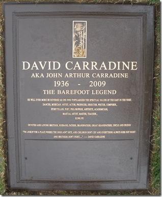 David Carradine 2