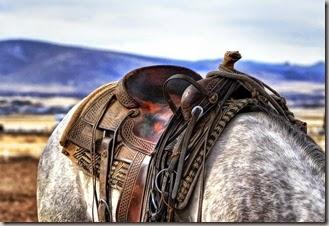 saddle-419745_1280
