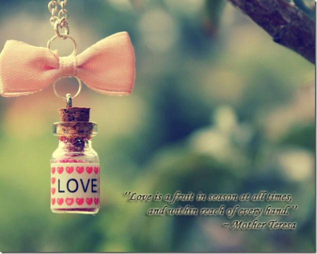 Spread The Love Mother Teresa