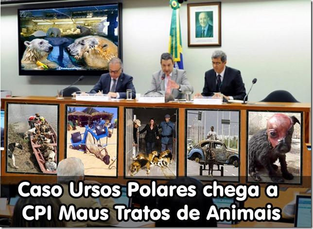 ursos_polares-cpi