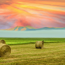 by Marijan Vucic - Landscapes Prairies, Meadows & Fields