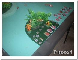 sundays game 021