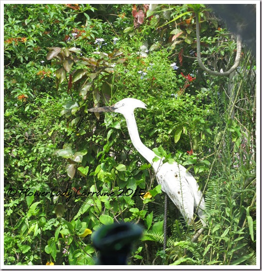 09-08-secret-garden-crane2