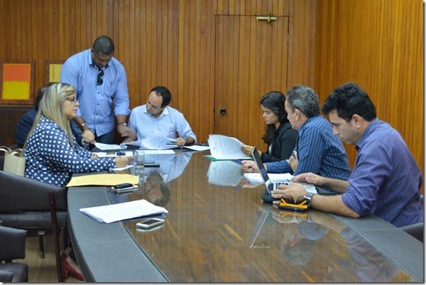 Grupo de Trabalho Centrais do Cidadão_Aline Bezerra (2)