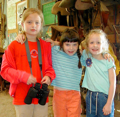 3 pals explore the barn