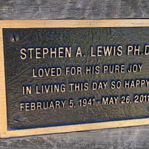 Stephen A. Lewis PH. D.