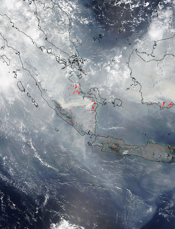 Satellite view of smoke from Indonesia forest fires, 24 October 2015. Photo: LANCE MODIS Rapid Response