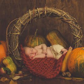 Little Pumpkin by Diána Barócsi - Babies & Children Babies ( babygirl, girl, pumpkin, autumn, colors, art, basket, baby, newborn )