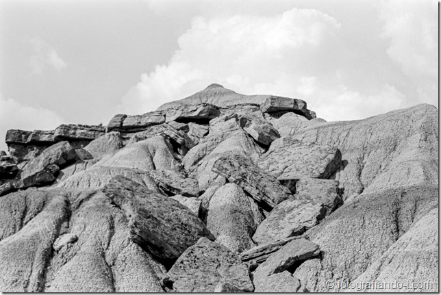 PhotoExif - Camera: EOS 300, Film: Kodak 400TX, Comment: