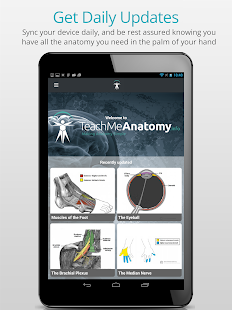 Teach Me Anatomy APK for Nexus