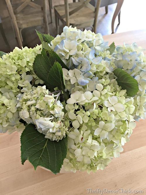 prolong life of cut flowers