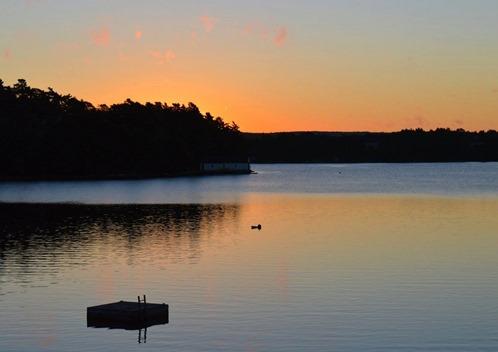 Nova Scotia 6