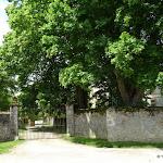 Château d'Égreville