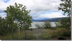 Aug 18_DaGirsl Rv Dezadeash Lake Site 2