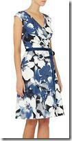 Ariella Fit and Flare Tie Waist Dress