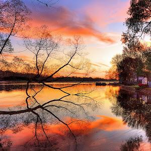 lake_sunset_trees_landscape_beach_art_night_reflection_48159_3840x2400.jpg