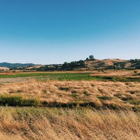 nature sonoma county