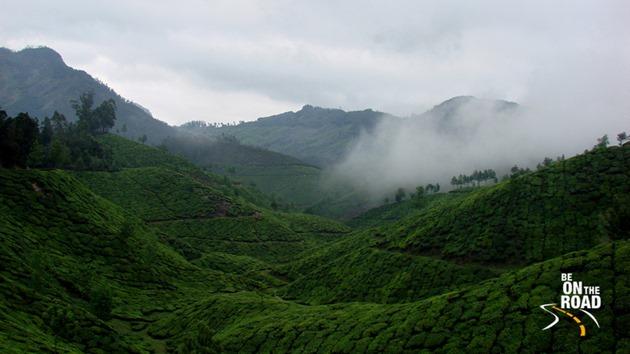 A classic Munnar landscape