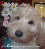 "Love Doodle say ""Above all Peace to all"""