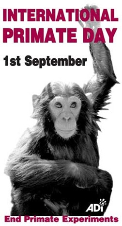 international primate day