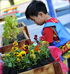 Outside planter boxes enable preschool children to garden, and to learn much about flowers, herbs and vegetables.