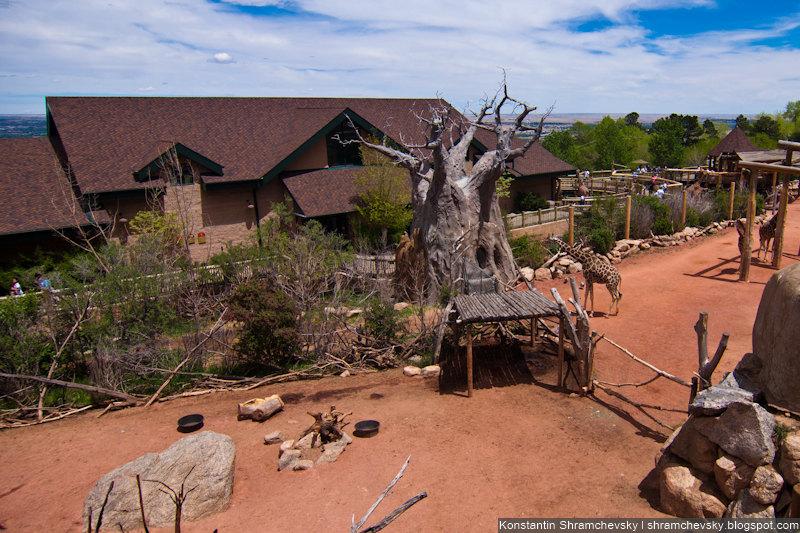 USA Colorado Cheyenne Mountain Zoo США Колорадо Шайенн Маунтин Зоопарк